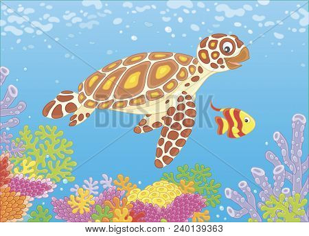 Funny Sea Loggerhead Turtle And A Small Striped Butterfly Fish Swimming Over Colorful Corals On A Re