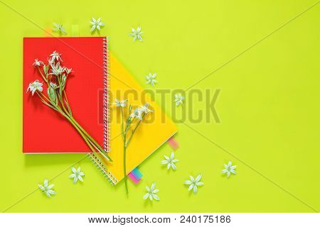 Many Blossom Flower Heads Ornithogalum And Red And Yellow Notebooks With Bouquet On Bright Green Sur