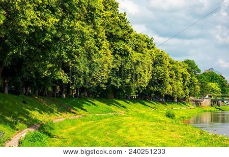 Part Of A Longest Linden Alley In Europe. Uzh River Embankment Of Ukrainian Town Uzhgorod In Summer