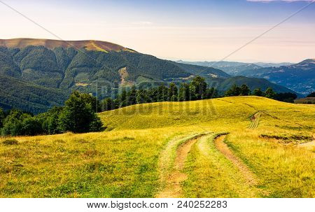Country Road Through Grassy Hillside. Lovely Summer Scenery Of Carpathian Mountains. Apetska Mountai