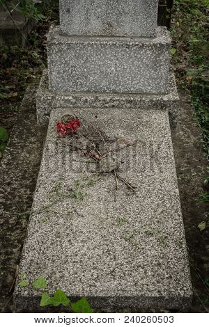 The Dried Flowers On A Memorial Stone