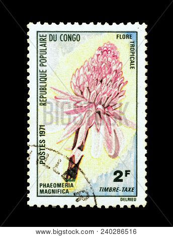Congo - Circa 1971 : Cancelled Postage Stamp Printed By Congo, That Shows Red Ginger Lily.
