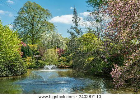 Shrewsbury Dingle: Fountains And Pond