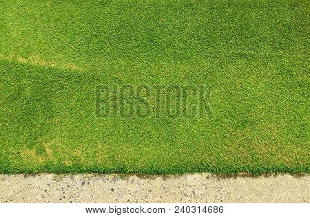 Green Grass Texture Background Of Golf Course With Concrete Texture.