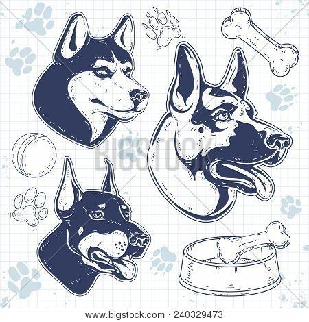 Vector Illustration, Sketch Icons, Set Guard Dog Breeds, Silhouette Dog Head, Shepherd, Husky, Dober