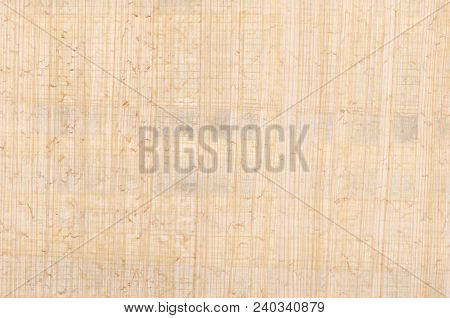 Papyrus Surface. Material Similar To Thick Paper, Used In Ancient Time As A Writing Surface. Made Of