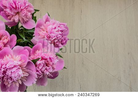 Beautiful Pink Peonies For Mother's Day