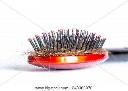 Comb Hair With Tufts, Bundle Of Hair, Lots Of Hair On The Hairbrush Closeup On A White Background