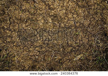 Dry Cracked Soil Texture And Background. Abstract Ground. Natural Abstraction. Cracked Soil Backgron