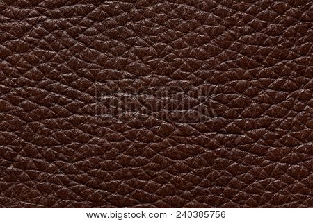 Expensive Leather Texture In Saturated Brown Colour. High Resolution Photo.