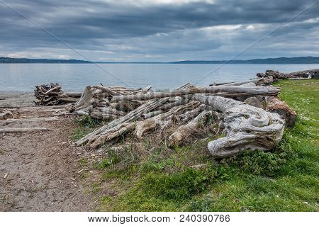 A View Of Shoreline Driftwood And The Puget Sound In Normandy Park, Washington.