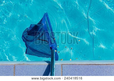 Swimming Pool Blue Cleaning Tool And Water With Ripples. Trash In Pool .