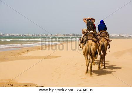 Menschen auf Kamel am Strand in der Nähe von Essaouira