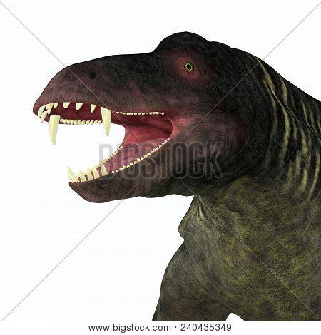 Jonkeria Dinosaur Head 3d Illustration - Jonkeria Truculenta Was An Omnivorous Therapsid Dinosaur Th
