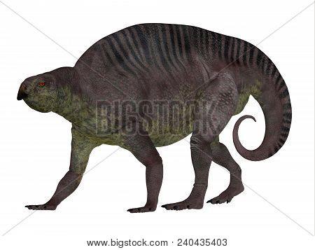 Lotosaurus Dinosaur Side Profile 3d Illustration - Lotosaurus Adentis Was A Herbivorous Poposauroid