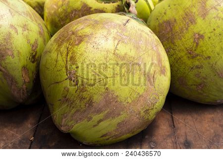 Tropical Fruit On Market - Whole Green Coconut. Coconut Peel Texture. Coco Palm Fruit Closeup Photo.
