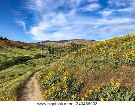 Boise, Idaho Foothills Trail In The Spring