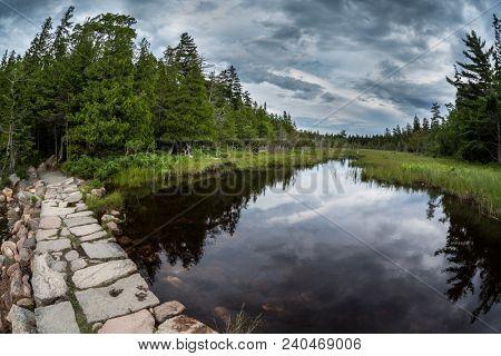 From hiking around Jordan Pond