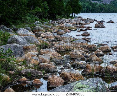 Near Jordan Pond in Acadia NP