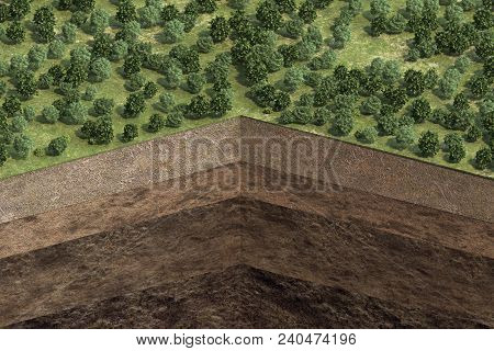 Cutaway Of Soil With Soil Layers And Forest. 3d Rendering