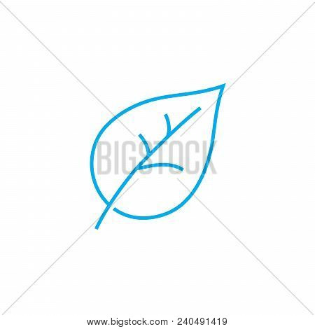 Botany Vector Thin Line Stroke Icon. Botany Outline Illustration, Linear Sign, Symbol Isolated Conce