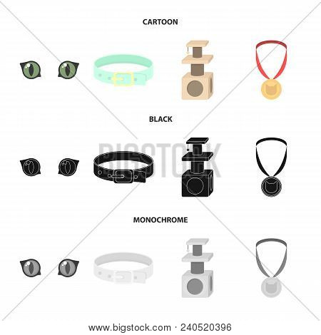Cat Eyes, A Collar, A House For A Cat, A Medal On A Ribbon.cat Set Collection Icons In Cartoon, Blac