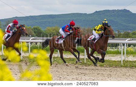 Pyatigorsk, Russia - May 13,2018:horse Racing For The Prize Of The `probni` In Pyatigorsk.ahead - Ma