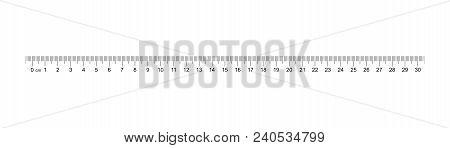 Ruler 30 Cm. Measuring Tool. Ruler Graduation. Ruler Grid 30 And 1 Cm. Size Indicator Units. Metric