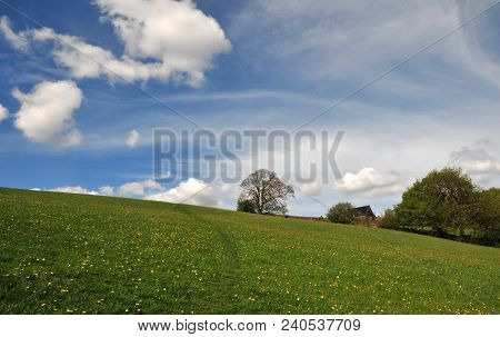 Pathway Winding Up Beautiful Flower Covered Hillside Pasture With A Farmhouse Among Spring Trees And