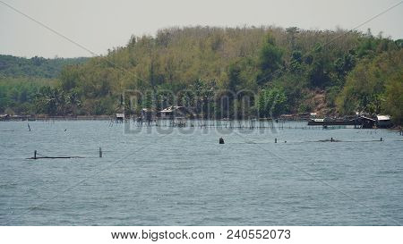 Fish Farm With Cages For Fish And Shrimp In The Philippines, Luzon. Fish Ponds For Bangus, Milkfish.