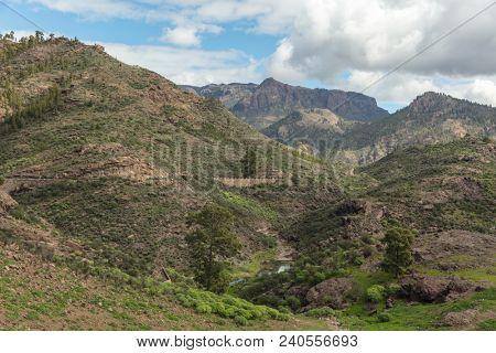 Landscape of Gran Canaria with brook in Tejeda