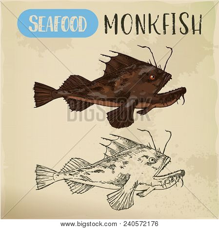 Sketch Of Monkfish Or Fishing-frog, Sea-devil Or Angelshark. Hand Drawn Fish For Signboard. Sport Fi