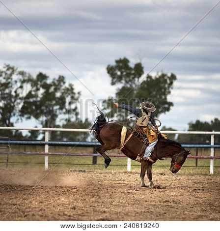 Bucking horse at a country rodeo ridden by a cowboy.