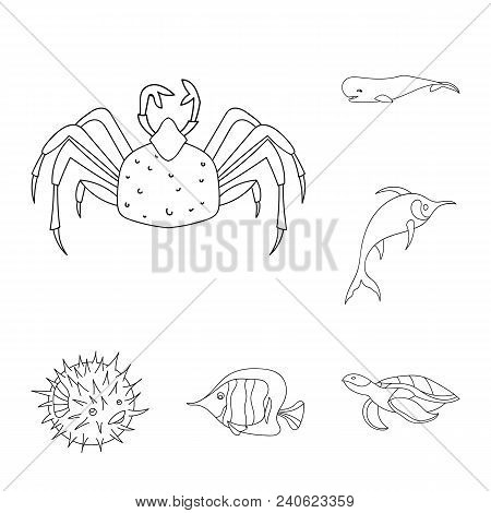 A Variety Of Marine Animals Outline Icons In Set Collection For Design. Fish And Shellfish Vector Sy