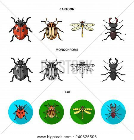 Insect, Bug, Beetle, Paw .insects Set Collection Icons In Cartoon, Flat, Monochrome Style Vector Sym