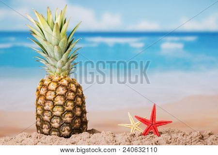 Ripe Pineapple Stands On Sand, Next To Starfish, Amid Seascape