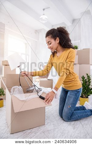 New Flat. Upbeat Curly-haired Girl Taking A Lamp Out Of The Box While Unpacking Her Belongings, Havi