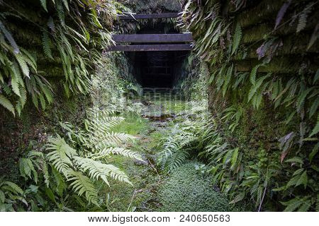 A Disused Coal Mine Entrance At The Brunner Heritage Area, Near Greymouth, New Zealand