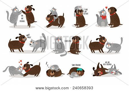 Dog And Cat Together. Funny Dog With Cat Are Best Friends Vector Illustration, Cartoon Pets With Fun