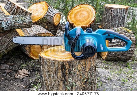 Chainsaw. Close-up Of Woodcutter Sawing Chain Saw. Close Up Professional Chainsaw Blade Cutting Log