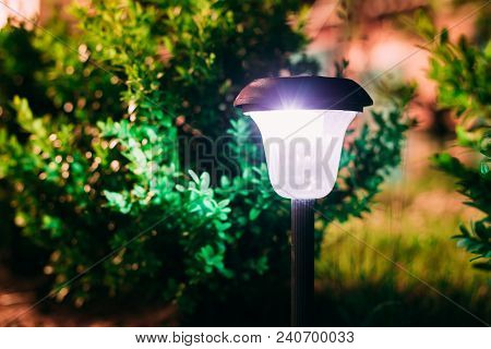 Close View Of Limelighted Energy-saving Solar Powered Lantern Glowing White Light In The Garden. Bac