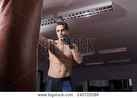 One Boxer Portrait, Adult Man, Shirtless Posing, Puching Boxing Bag, Indoors Room. Wearing Boxing Gl