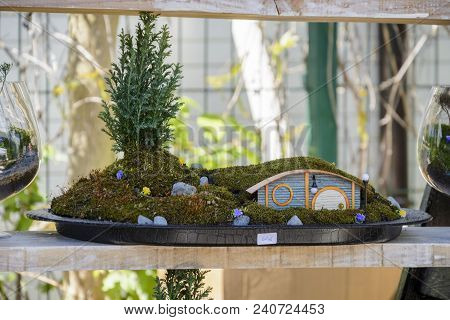 Hobbit House In A Pot With Moss And Little Pine Cone . Scale Model Of A Hobbit House