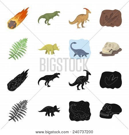 Sea Dinosaur, Triceratops, Prehistoric Plant, Human Skull. Dinosaur And Prehistoric Period Set Colle