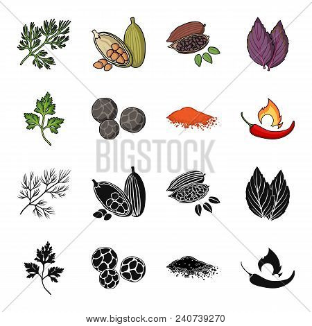 Ptrushka, Black Pepper, Paprika, Chili.herbs And Spices Set Collection Icons In Black, Cartoon Style