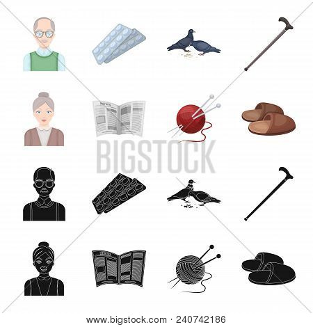 An Elderly Woman, Slippers, A Newspaper, Knitting.old Age Set Collection Icons In Black, Cartoon Sty
