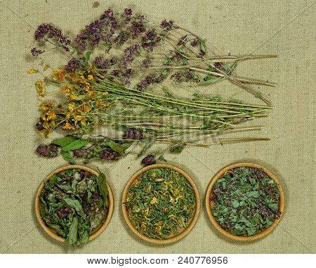 Set Of Healing Herbs. Dried Grass For Use In Alternative Medicine, Spa, Herbal Cosmetics, Herbal Med
