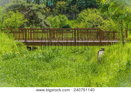 Wooden Footbridge Over A Ravine Overgrown With Lush Green Grass In Small Public Park On Sunny Spring