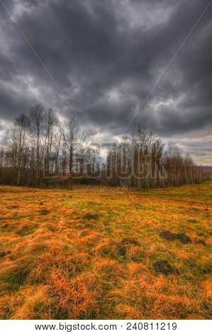 Meadow And Small Forest Under Dramatic Sky At Early Spring. Hdr Image. Poland, The Holy Cross Mounta