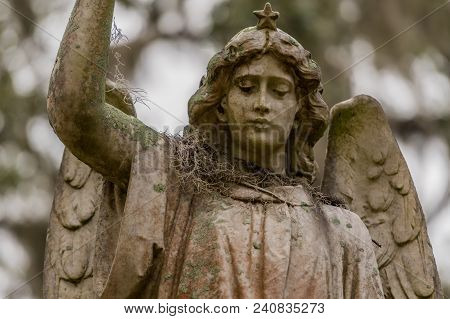 Spanish Moss On Shoulder Of Angel Statue In Southern Cemetary